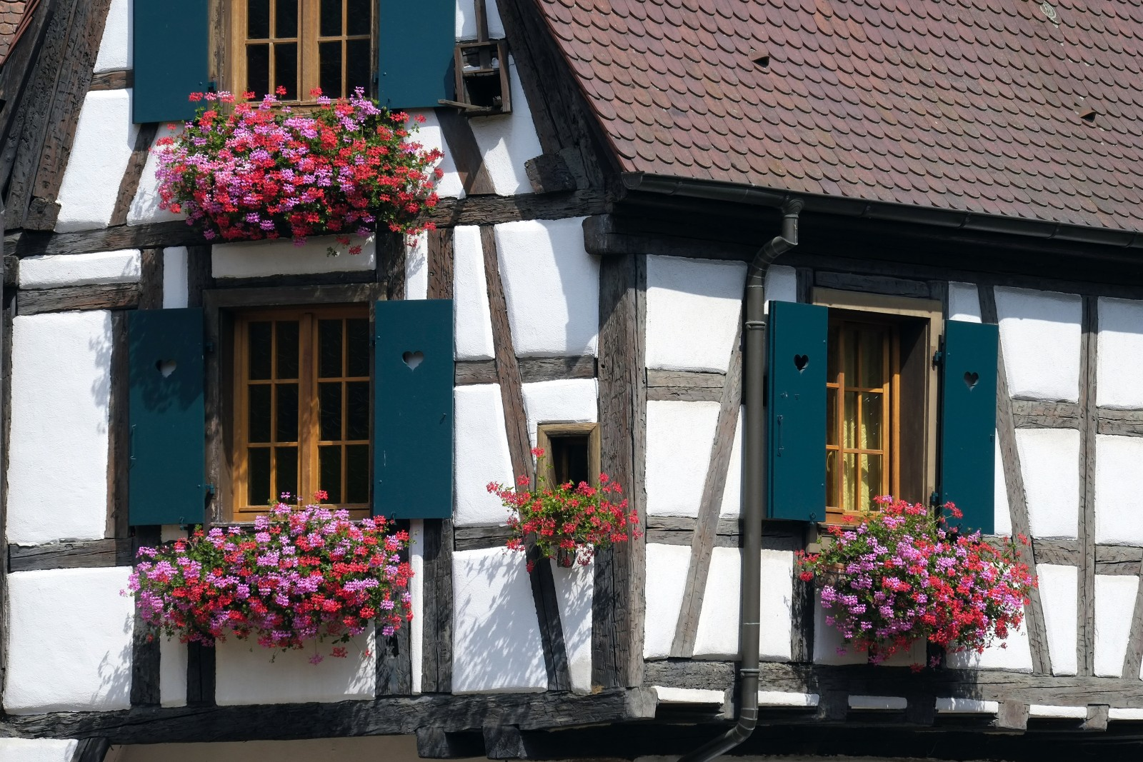 Alsace France photo credit: Massimo Battesini