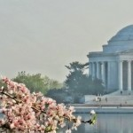 Jefferson Memorial in springtime, Washington DC, Mid Atlantic states, photo credit: ddt_uui