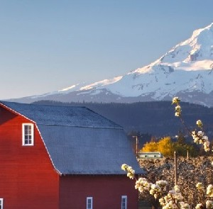 Willamette Valley and Mount Hood, Oregon Pacific Northwest